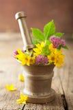 Mortier avec des fleurs et des herbes photos libres de droits