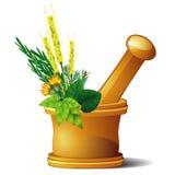 Mortier avec des herbes Photographie stock libre de droits