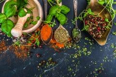 Mortier avec des herbes et des épices photographie stock