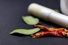 Mortier avec le poivre de piments photos libres de droits