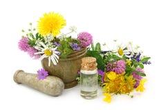 Mortier avec les fleurs fraîches et l'huile essentielle photographie stock