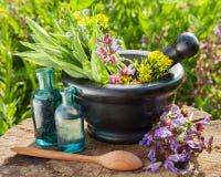 Mortier avec les herbes curatives et la sauge photographie stock
