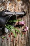 Mortier avec les herbes et les épices savoureuses photographie stock libre de droits