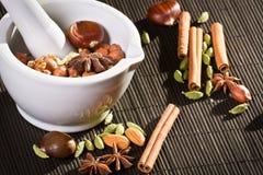 Mortier blanc et différents genres de noix Image stock