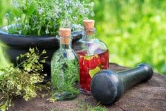 Mortier des herbes curatives, de la teinture de fines herbes, de l'infusion saine et des plantes médicinales Photos stock