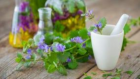 Mortier des herbes curatives et des bouteilles de teinture saine images stock