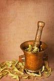 mortier en bronze d'herbes vieux Images libres de droits