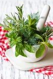 Mortier et herbes. photographie stock