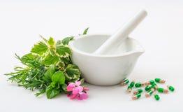 Mortier, herbes et pilules sur le fond blanc photo libre de droits