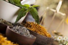 Mortier, médecine parallèle et remède naturel image stock