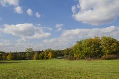 The morton arboretum illinois. Tree changing color at the morton arboretum illinois usa Stock Images