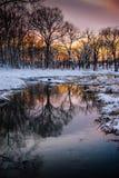 Morton Arboretum im Winter Lizenzfreies Stockfoto
