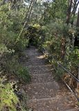 Morton National Park fotvandra Royaltyfria Foton