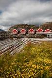 Mortsund landascape - Vestvågøy Insel - Lofoten Stockbild