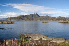 Mortsund, Lofoten Islands, Norway, Scandinavia Royalty Free Stock Images