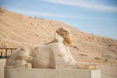 Mortuary Temple of Hatshepsut Stock Photos