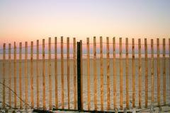 Morue de cap, le Massachusetts Photo libre de droits