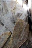 Morue sèche salée découpée en tranches pour mettre l'eau de nto pour la cuisson Photos libres de droits