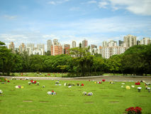 Morumbi Cemetery Stock Photography