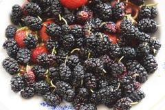 Morwa z truskawkami na talerzu Makro- owoc Obrazy Royalty Free