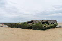 Morwowy schronienie Fotografia Stock