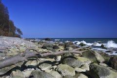 Morza Bałtyckiego Wybrzeże obraz royalty free