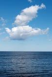 Morza Bałtyckiego wybrzeże Zdjęcia Royalty Free