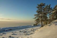 Morza Bałtyckiego wybrzeże Zdjęcia Stock
