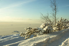 Morza Bałtyckiego wybrzeże Fotografia Stock