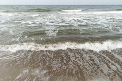 Morza Bałtyckiego wybrzeże blisko Ahrenshoop Obraz Royalty Free