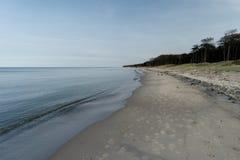 Morza Bałtyckiego wybrzeże blisko Ahrenshoop Fotografia Royalty Free