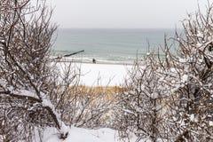 Morza Bałtyckiego wybrzeże w Ahrenshoop w zima czasie (Niemcy) Fotografia Royalty Free