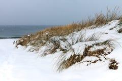 Morza Bałtyckiego wybrzeże w Ahrenshoop w zima czasie (Niemcy) Obraz Royalty Free