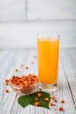 Morza buckthorn sok, glasss Zdjęcie Stock