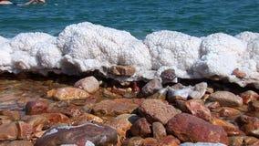 morza martwego zbiory