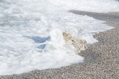 Morza piankowy makro- Obrazy Stock