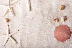 morze łuska z piaskiem jako tła copyspace, lata pojęcie Zdjęcia Stock