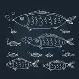 Morze animals-12 royalty ilustracja