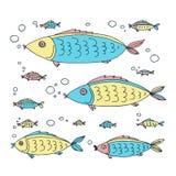 Morze animals-14 Zdjęcia Stock