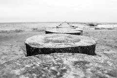 Morze Bałtyckie idylla fotografia royalty free