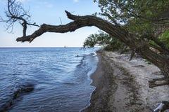 Morze Bałtyckie linia brzegowa, Gdynia, Polska Obraz Royalty Free