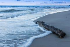 Morze Bałtyckie z falami i stary logujemy się plażę obrazy stock