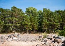 Morze Bałtyckie brzeg w Latvia Zdjęcia Royalty Free