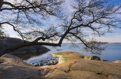Morze Bałtyckie sceneria Fotografia Stock