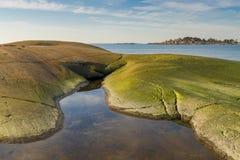 Morze Bałtyckie sceneria Obrazy Stock