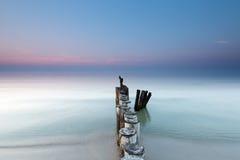 Morze Bałtyckie i falochron Zdjęcia Royalty Free