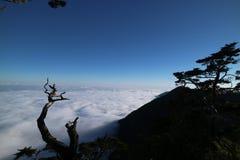 Morze chmura Obrazy Royalty Free