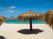 Morze Cortez plaża Obrazy Stock