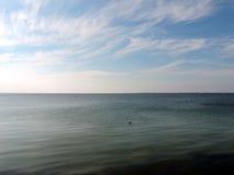 Morze daleki w morzu zdjęcie royalty free