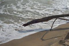 Morze fala na plaży Fotografia Royalty Free